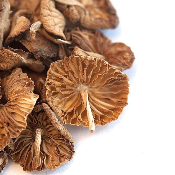 Mousseron Mushrooms, Whole (Dried)