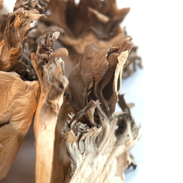 Maitake Mushrooms (Hen of the Woods), Whole