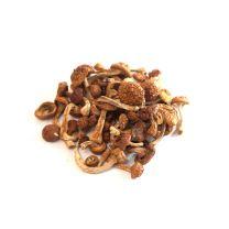 Nameko Mushrooms, Dried