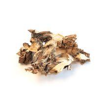 Maitake Mushrooms (Hen of the Woods), Dried